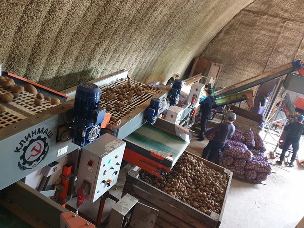 Калибратор картошки сетчатый в хозяйстве